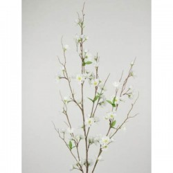 Artificial Apple Blossom XL Ivory - C119 B1