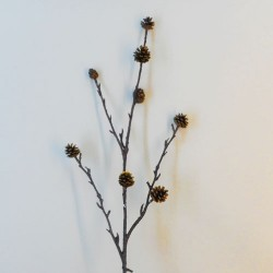 Pine Cone Branch Gold - 18X250