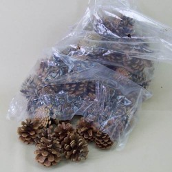 Natural Fir Cones 1kg bag - 13X059