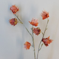 Sparkle Hibiscus Buds Apricot - 18X035