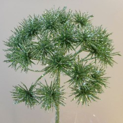 Starburst Allium Mint Green Christmas Flowers - 17X114