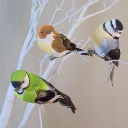 9cm Clip on Garden Birds Pack of 3 - BIR008