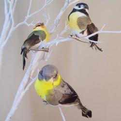 9cm Clip on Garden Birds Pack of 3 - BIR009