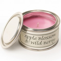 Pintail Paint Pot Candles | Apple Blossom & Wild Berry Fragrance - CA017