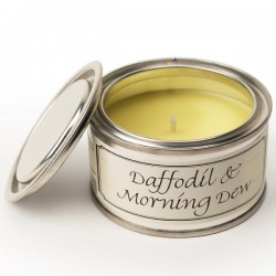 Pintail Candles Fragranced Candle Tin Daffodil and Morning Dew - CA009