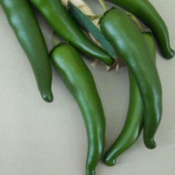 Artificial Chillies Green - CHI001 GG2