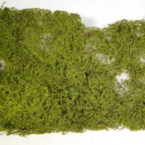 Moss Roll Green 15cm x 90cm - MOS006 U4