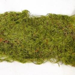 Moss Roll Green 6cm x 90cm - MOS005 U4