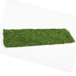 Moss Sheet Rectangle Green 58cm - MOS013 U3