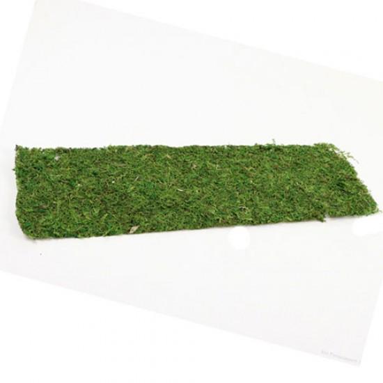 Moss Sheet Rectangle Green 58cm Decorative Moss