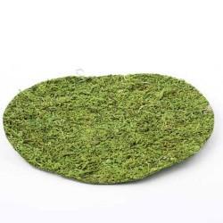 Moss Sheet Round Green 25cm - MOS014 U3