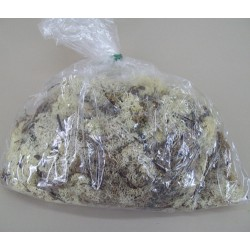 Reindeer Moss Natural Green - MOS001 U4