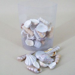 Sea Shells Silver Mix - SHE005