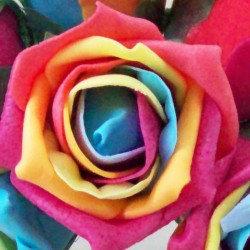 Colourfast Cottage Foam Roses Bundle Rainbow 6 Pack - R496 T2