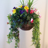 Hanging Baskets, Garden Planters and Window Boxes