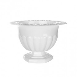 Holly Chapple Abby Compote White 10cm - HOL005 2B