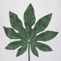 Artificial Fatsia Leaf Large - FA002 E2