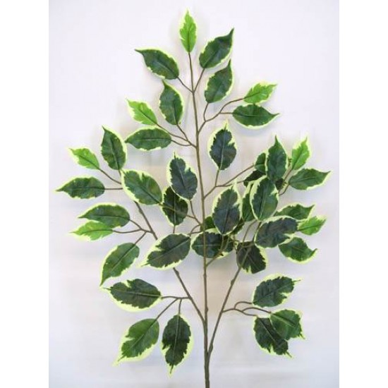 Luxury Variegated Artificial Ficus Leaves - FIC002 E2