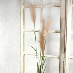 Artificial Pampas Grass Peach 145cm - PAM001
