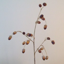 Artificial Acorns Branch - ACO003 B4