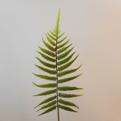Artificial Fern Leaf 64cm - FER001 F2