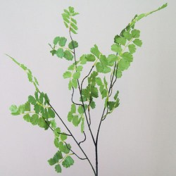 Artificial Delta Maidenhair Fern - FER004 C2