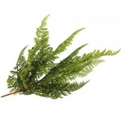 Artificial Parsley Fern Plants - FER023