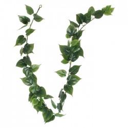 Artificial Philo Leaf Garland 180cm - PHI007 J3