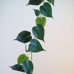 Artificial Philodendron | Morning Glory Leaves Garland - PHI008 J4