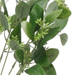 Artificial Seeded Eucalyptus Plant - EUC012 H4