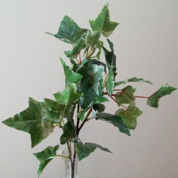 Artificial Variegated Holland Ivy Stem - IVY033 BX12