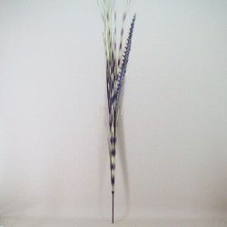Zebra Grass and Pheasant Feathers - ZEB001 S1