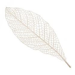Lacy Skeleton Leaf Cream - SKE002 S3