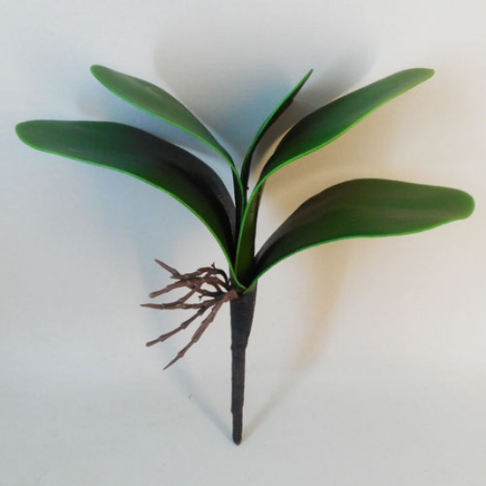 Orchid Leaves Medium - O051 I4