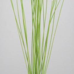 Midelino Sticks Lime Green - MS005