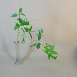 Trailing Artificial Ruscus Stem - RUS009 O2