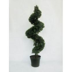 4' Spiral Boxwood Tree - TS009