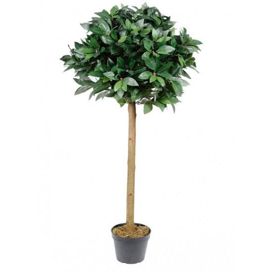 4' Topiary Bay Tree - BAY002A