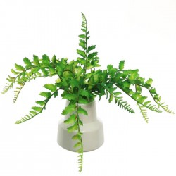 Artificial Fern in White Ceramic Pot - FER056 FR