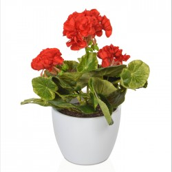 Potted Plants Artificial Geraniums  Red - GER006