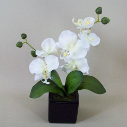 Artificial Phalaenopsis Orchid Plant in Black Ceramic Pot Cream - ORC005 4B