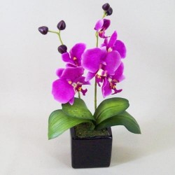 Artificial Phalaenopsis Orchid Plant in Black Ceramic Pot Magenta Pink - ORC004 7D