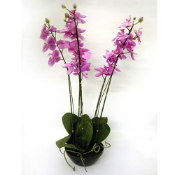 Artificial Phalaenopsis Orchid Plant in Black Bowl Pink - ORP046 4B