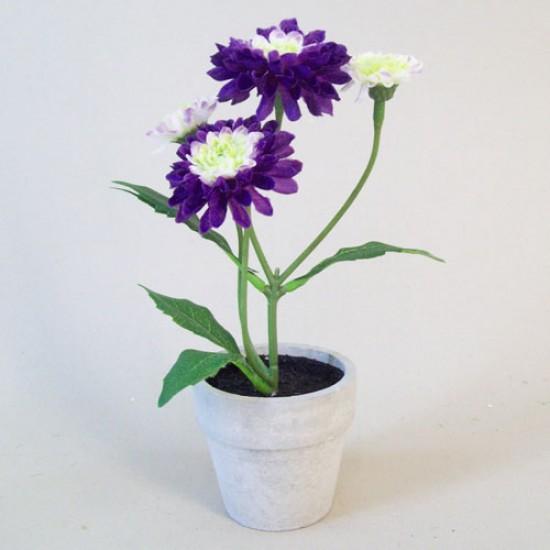Artificial Plants Daisy Pomponette Purple - POM003 3B
