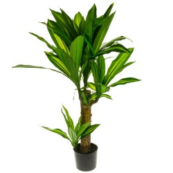 Artificial Plants Potted Yucca 80cm - YUC006