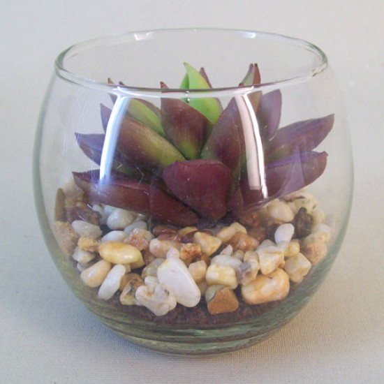 Artificial Succulents in Mini Fish Bowl - SUC009 2D