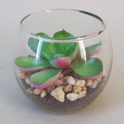 Artificial Succulents in Mini Fish Bowl - SUC007 2D