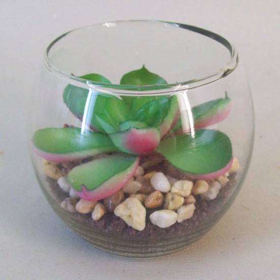 Artificial Succulents in Mini Fish Bowl - SUC007 2D