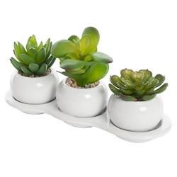 Artificial Succulents in White Ceramic Bowls - SUC002 1A