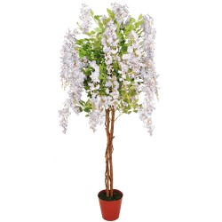5 foot White Wisteria Tree - TS001